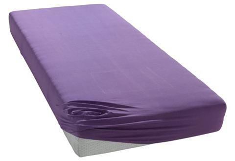 Простыня на резинке Фиолетовая (трикотаж) (120х200) простыни легкие сны простыня на резинке color way цвет меланж 120х200 см