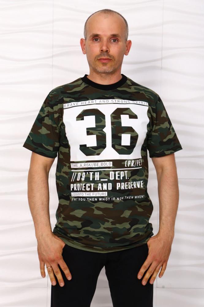 Футболка мужская iv67231