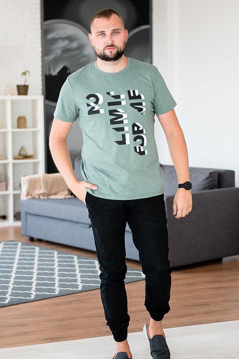 Футболка мужская iv56254