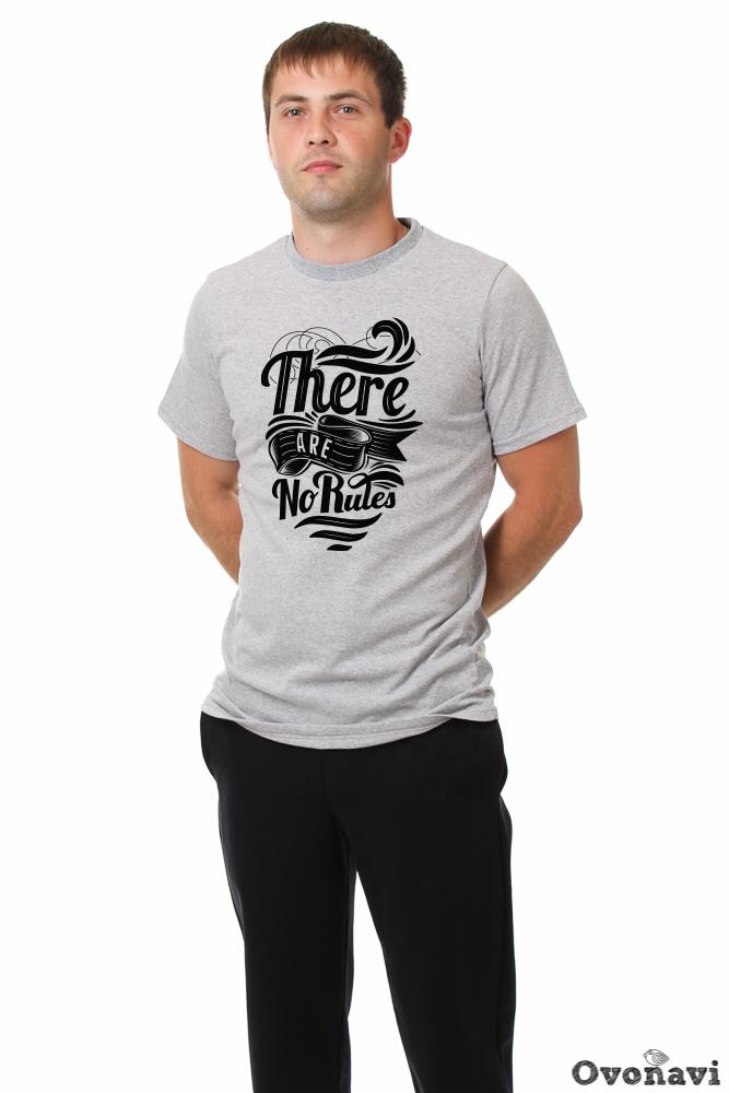 Футболка мужская Глеб (принт: без правил) футболка anteater 348 black